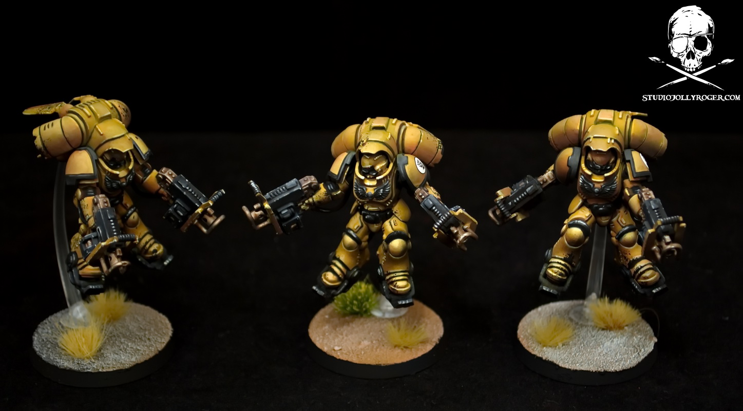 Imperial Fist Invictor