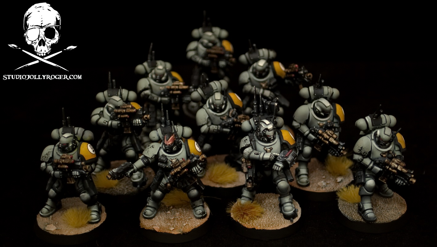 Imperial Fist Scouts
